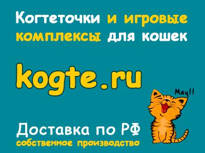 средств дебет 01 кредит 08