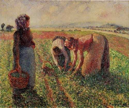 Camille Pissarro. Picking peas. 1893. oil on canvas. Langmaatt Foundation, Switzerland.