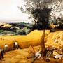 Pieter Bruegel the Elder. The Corn Harvest. 1565