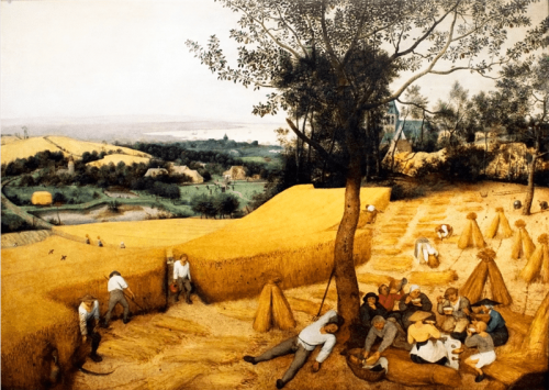 Pieter Bruegel the Elder. The Corn Harvest. 1565