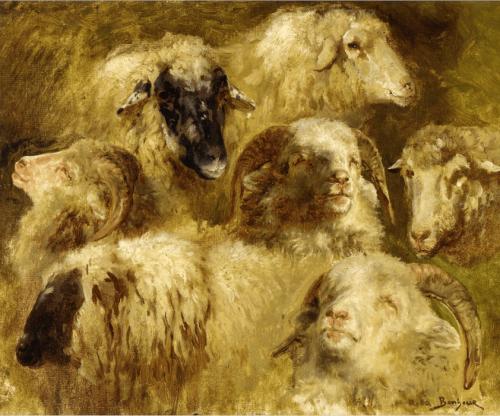 Rosa Bonheur (Marie Rosalie Bonheur, - 1822—1899). Sheep and rams.